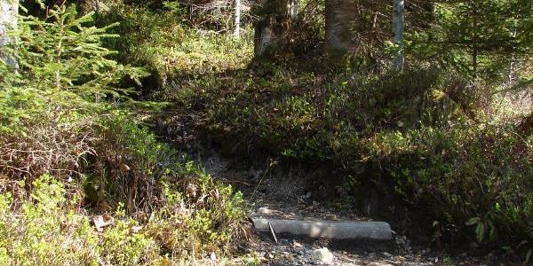 Waldweg zum Ettaler Manndl