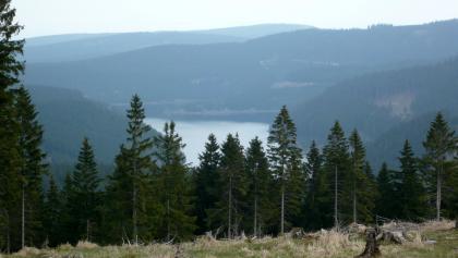 Blick vom Großen Buchenberg auf die Schmalwassertalsperre