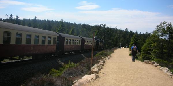 Brockenbahn am Goetheweg