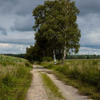 Zwischen Schmolde und Freyenstein