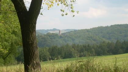 Burg Grodno (Aug. 2011)