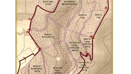 Die Grenzen des Arzbacherwaldes 1863