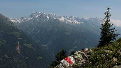 Blick auf den Tödi von der Alp Soliva