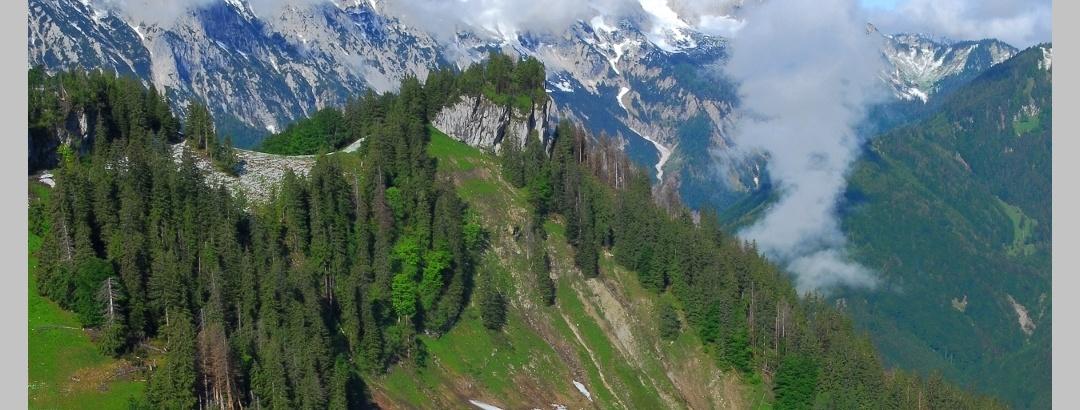 Trämpl mit Sengsengebirge im Hintergrund