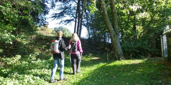 Einstieg Medebacher Bergweg