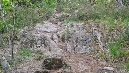 Abstieg, kurz vor Achouffe