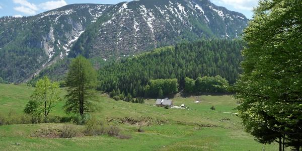 Die Schaumbergalm ist vom Gipfel des Trämpl schon zu sehen