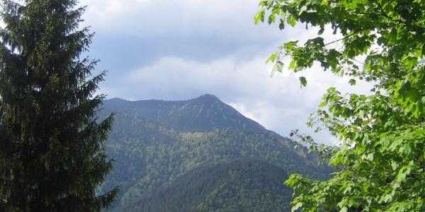 Morgendlicher Blick zum Hirschberg