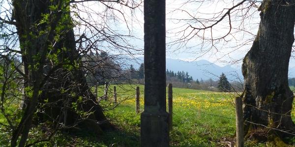 Wegkreuz auf der Kuppe oberhalb des Gagräsgrabens im Südosten von Steingaden.
