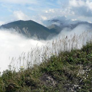 Brecherspitz, am Gipfel