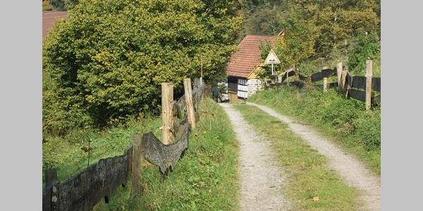 Drei malerische Mühlen geben dem Mühlenweg seinen Namen.