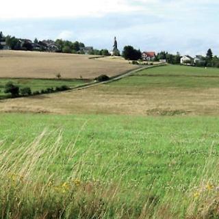 Wiesen und Felder bedecken die Hochfläche des Hunsrücks, über die wir wandern.