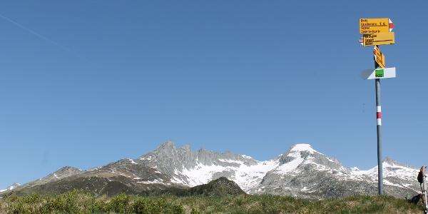 Auf dem Gipfel, mit Piz Gendusas