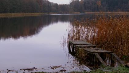 Zum Verweilen lädt eine kleine Wiese am See mit Rastplatz ein.