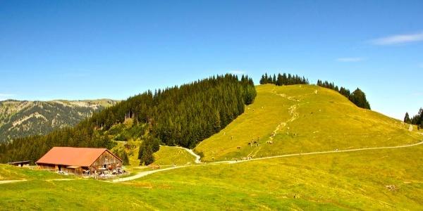 Fahnengehren Alpe mit Ofterschwanger Horn
