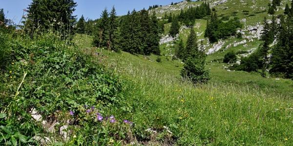 Den Gipfel des Klausenbergs kann man etwas rechts der Bildmitte erkennen