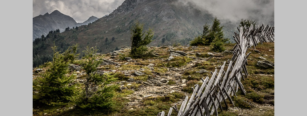 Entlang dem Holzkreuzzaun zum Ederplan. Blick zurück auf den Kamm.