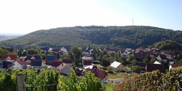 Burgsponheim Blick