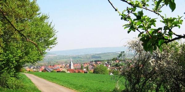 Aussicht vom Kapellenberg Nieheim