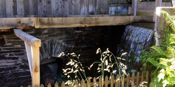 Kornmühle