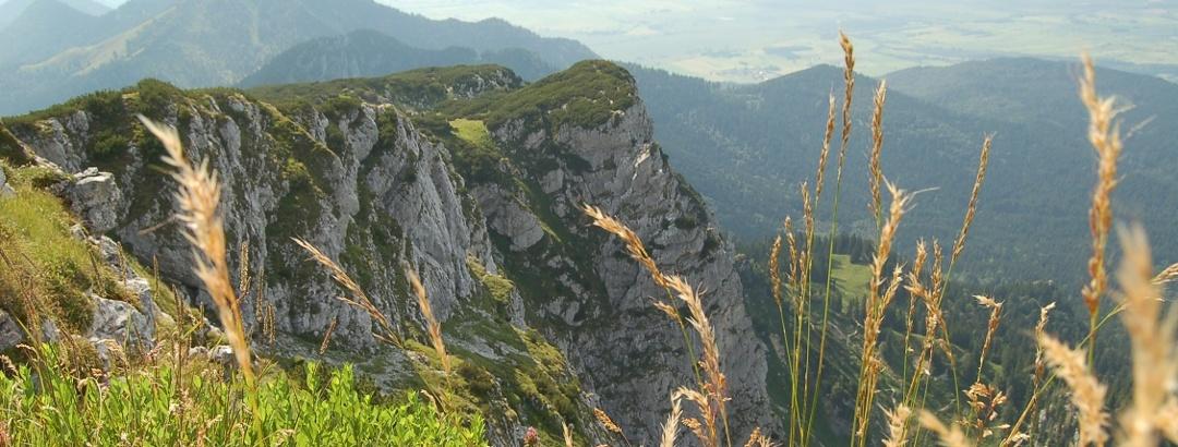 Blick von der Benediktenwand.