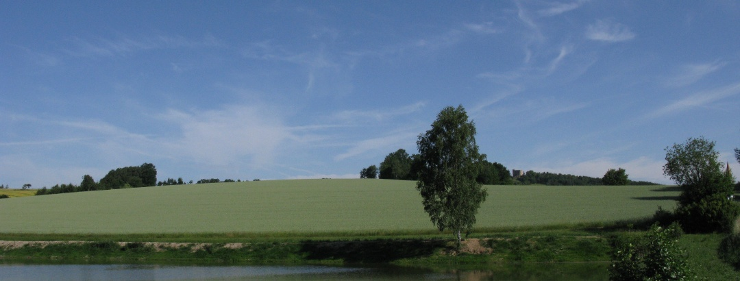 Blick auf Burg Lobenstein bei Zell.