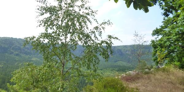Aussichtsplattform am Kuhstall
