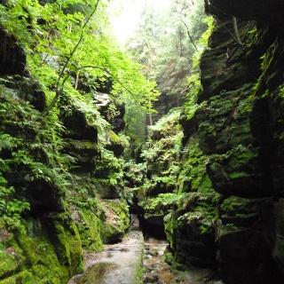 Das Uttewalder Felsentor erscheint zwischen den gigantischen Felsen besonders klein