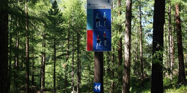 Parcours vita du Zen Stecken jusqu'à Blatten