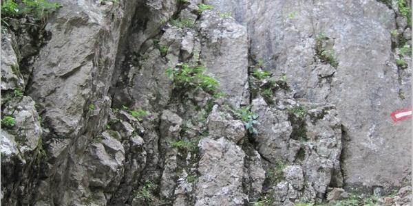 Einstieg in die Felsrinne kurz vor der Höhle