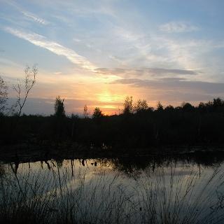 Sonnenuntergang im Emsdettener Venn.