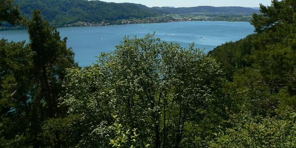 Blick vom Otto-Hagg-Weg in die andere Richtung: auf die Hegau-Berge und den Ort Bodman.