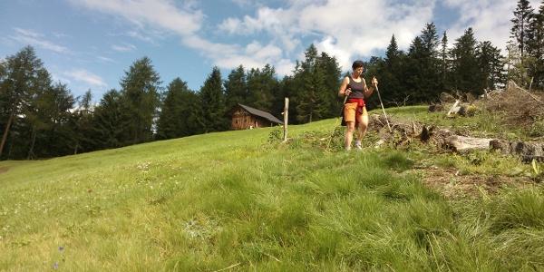 Escursione tra le baite altoatesine nel Gruppo delle Maddalene