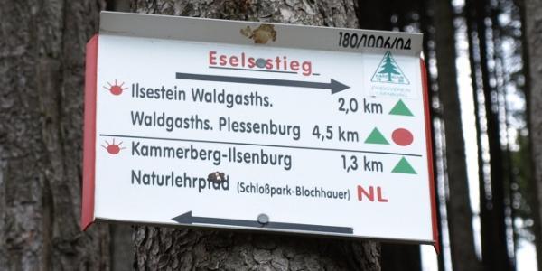 10 Schild Eselsstieg - hier roten Punkt und grünem Dreieck folgen