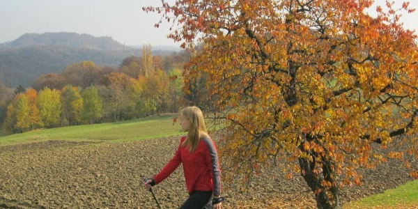 Gossendorf-Runde