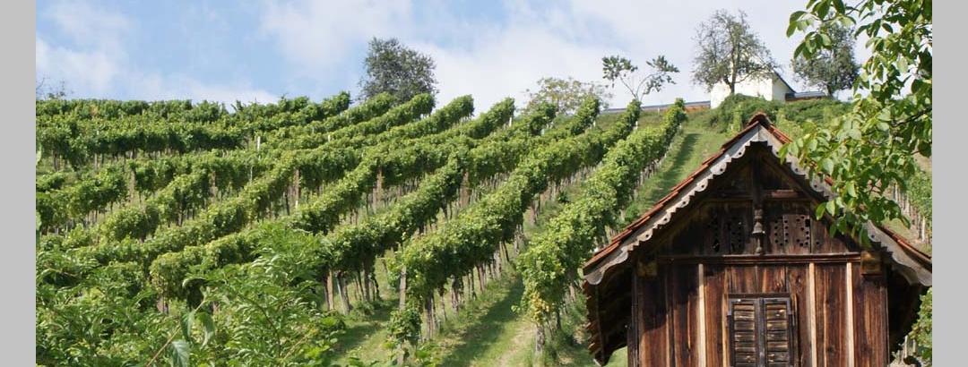 Oststeirische Römer-Weinstrasse