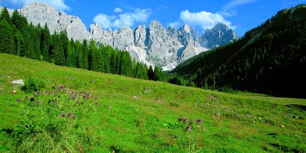 Val Venegia - Ai piedi delle Dolomiti (Pale di San Martino)