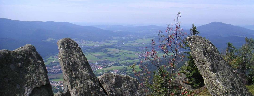 Der Blick der Osserwiese auf den Lamer Winkel.