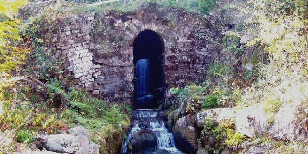 Wasserschloss am Kaltenbachsee