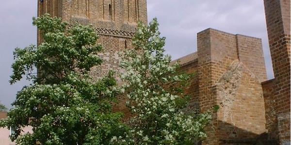 Der Schwedter Torturm beherbergt heute die Sternwarte.