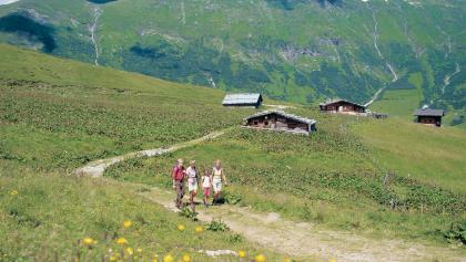 Auf der Gadaunerer Hochalm sieht die Landschaft noch urwüchsig aus.