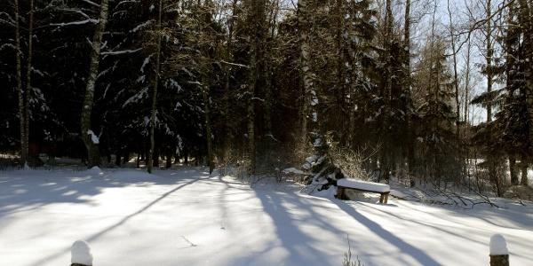 Kendlmühlfilze im Winter