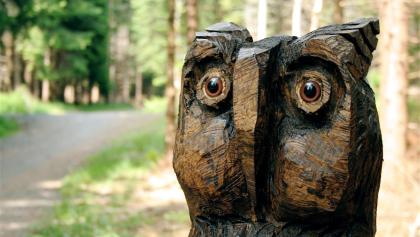 Wenn wir die Augen offen halten, entdecken wir diese, aus einem Baumstamm geschnitzte Eule im Wald.