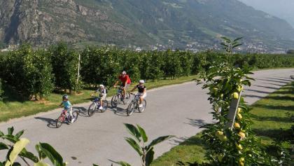 Familienausflug auf der Etschradroute