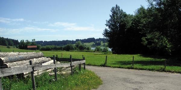 Wir wandern entlang des Rottachsees.
