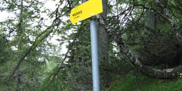 Normalweg zum Kirchbergerköpfl und Rundweg trennen sich