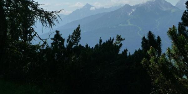 am Sattel zwischen Hechenberg und Hechenbergl
