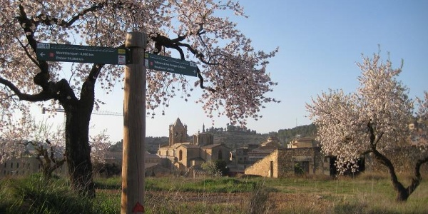Zisterzienser Route in 5 Tagen  / La Ruta del Císter en 5 dies