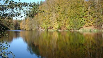 Zwei Wasserflächen werden im Naturschutzgebiet durch einen Damm angestaut.
