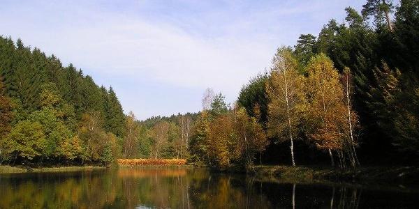 Weiher bei Niederwürzbach